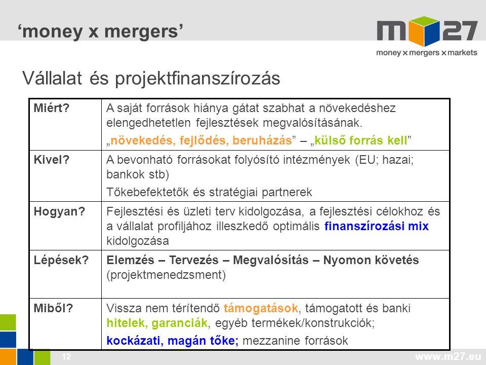 Vállalat és projektfinanszírozás