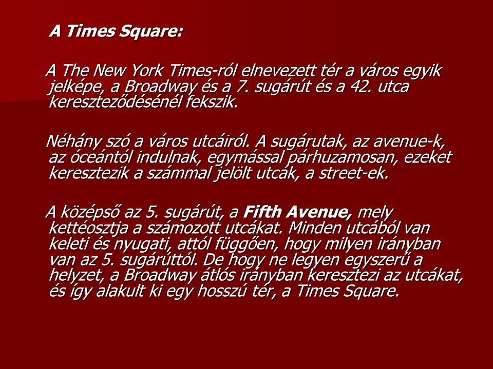 A Times Square: A The New York Times-ról elnevezett tér a város egyik jelképe, a Broadway és a 7. sugárút és a 42. utca kereszteződésénél fekszik.