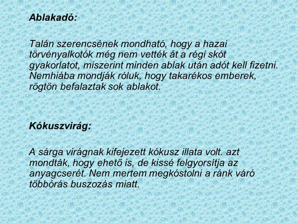 Ablakadó: