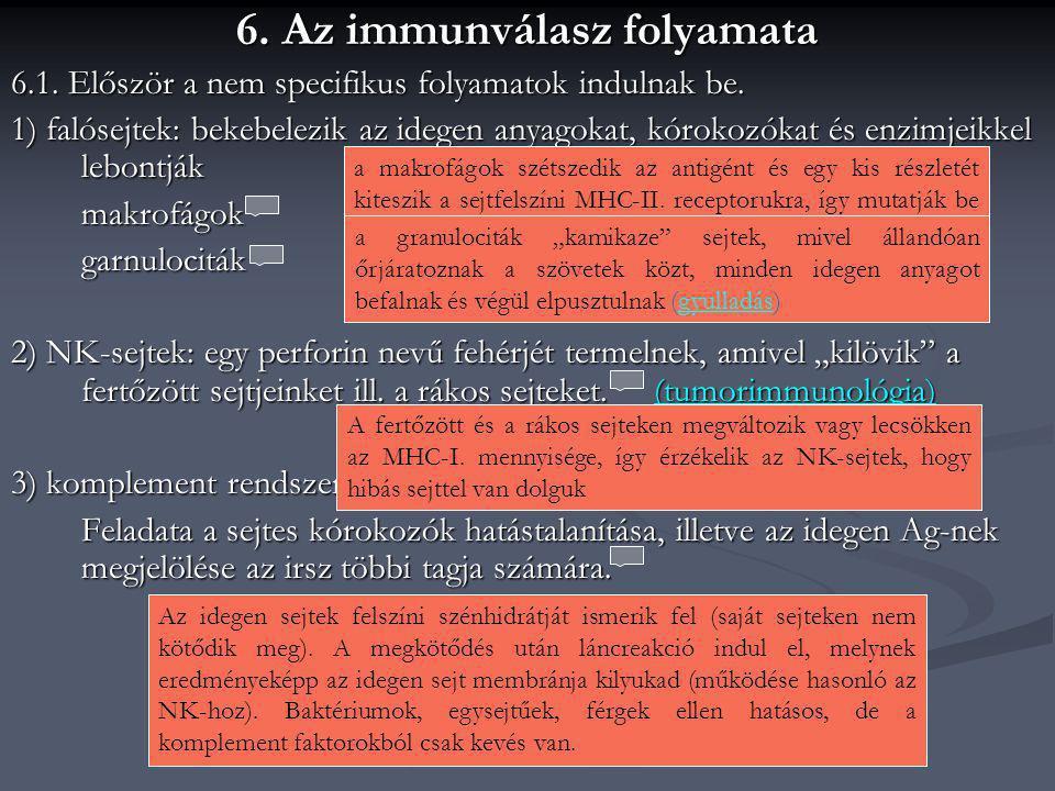 6. Az immunválasz folyamata