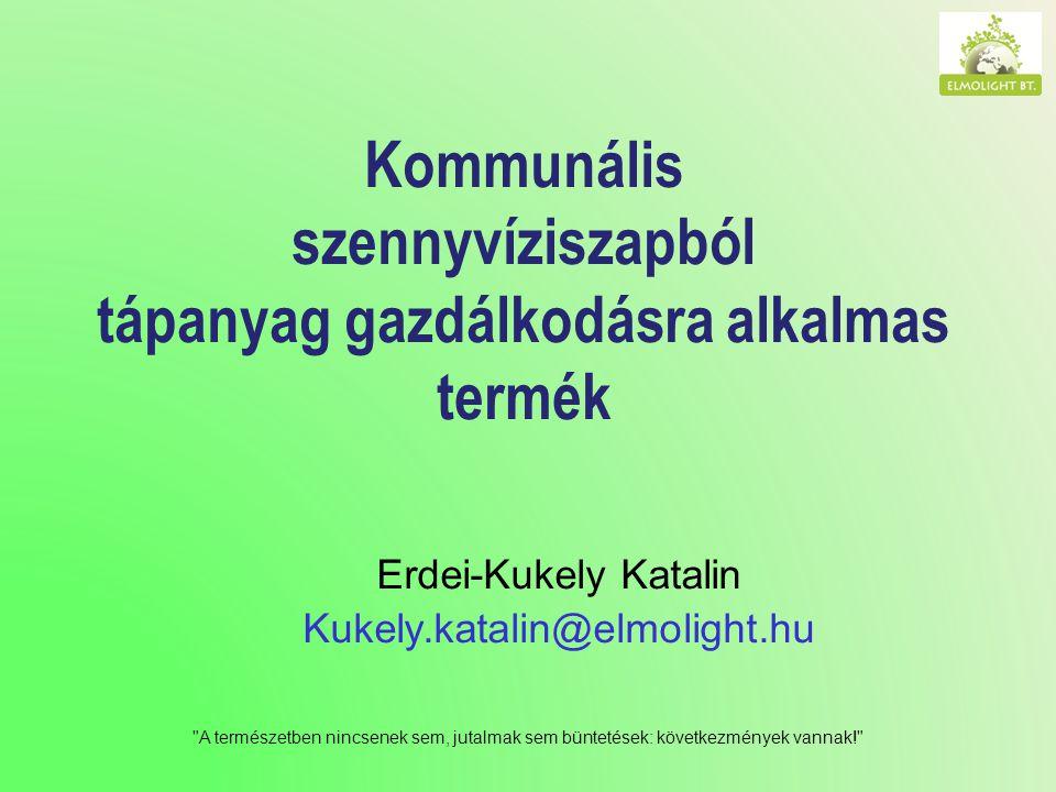 Erdei-Kukely Katalin Kukely.katalin@elmolight.hu