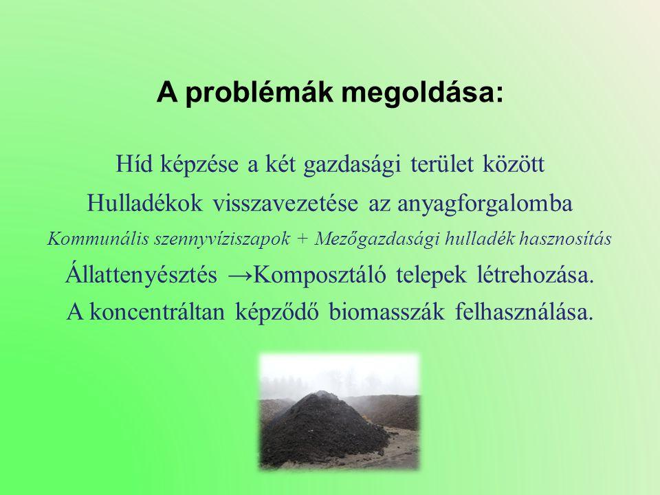 A problémák megoldása: