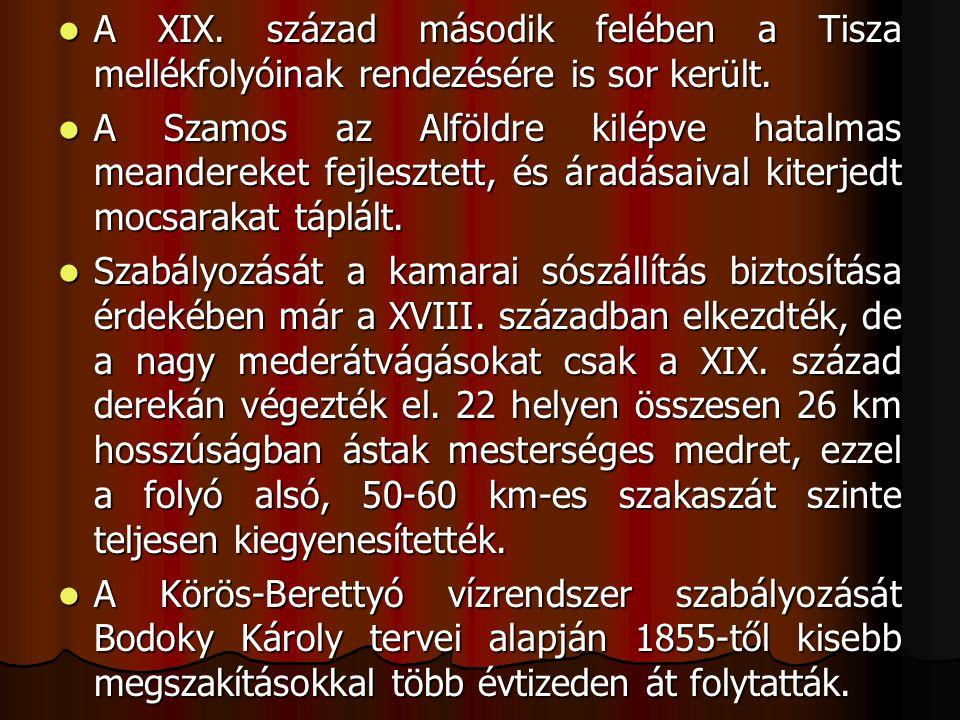 A XIX. század második felében a Tisza mellékfolyóinak rendezésére is sor került.