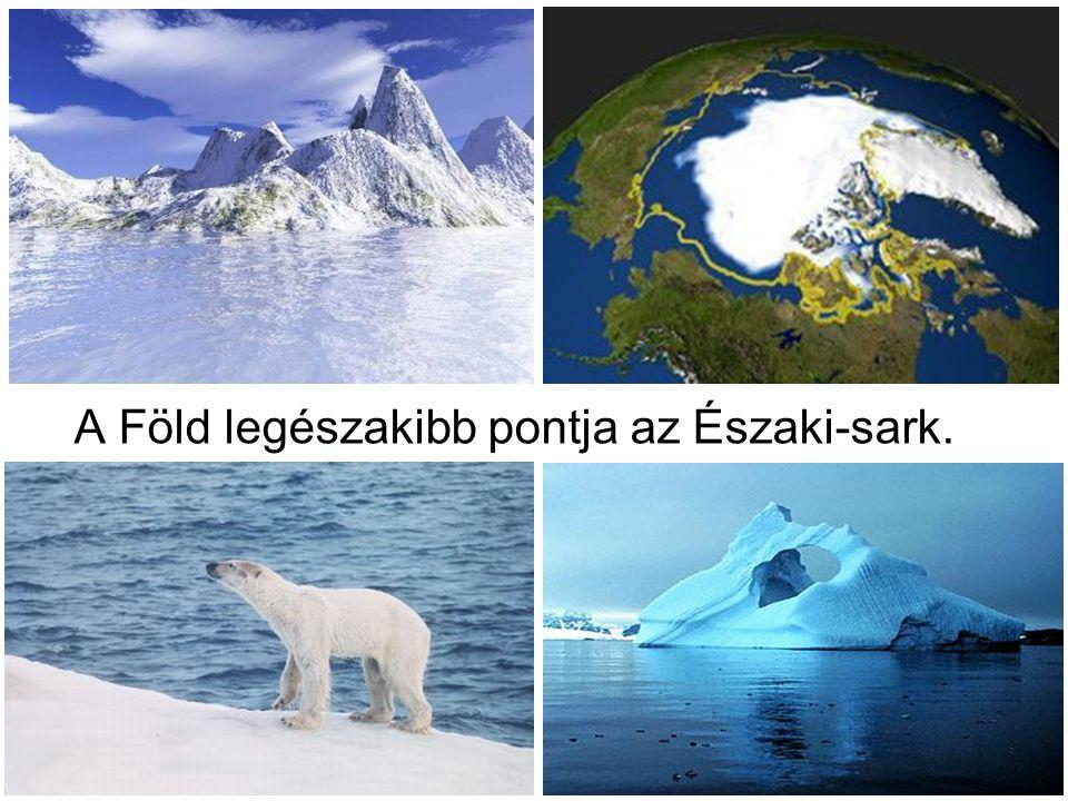 A Föld legészakibb pontja az Északi-sark.
