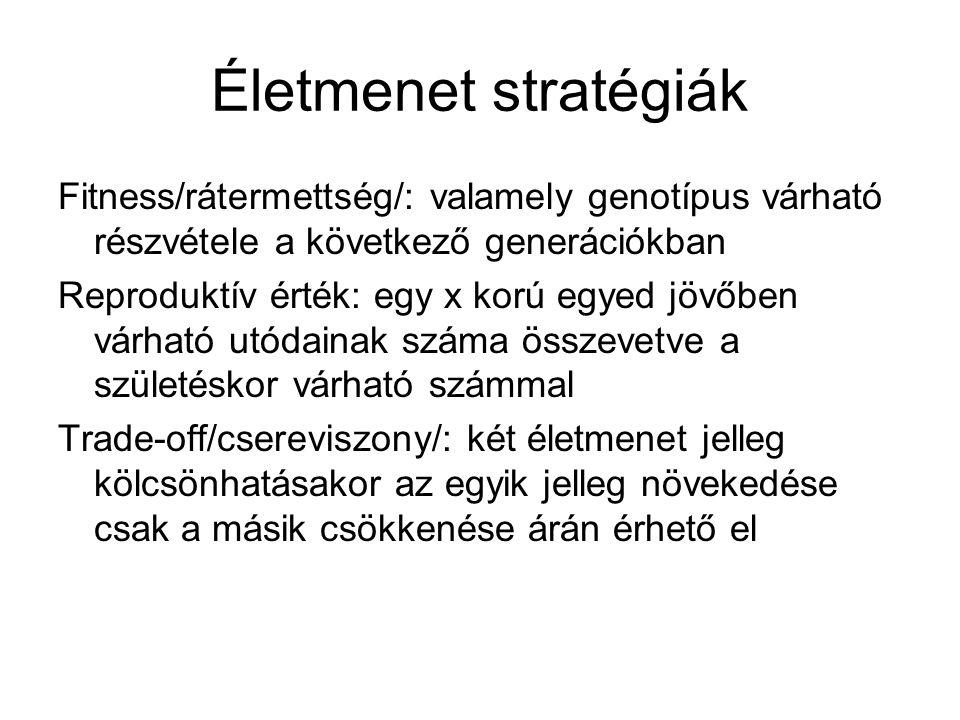 Életmenet stratégiák Fitness/rátermettség/: valamely genotípus várható részvétele a következő generációkban.