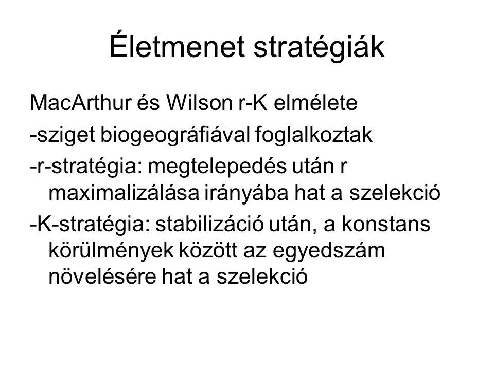 Életmenet stratégiák MacArthur és Wilson r-K elmélete