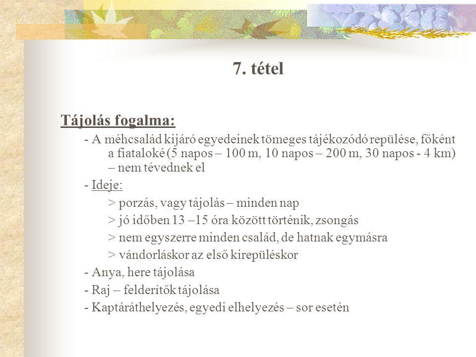 7. tétel Tájolás fogalma:
