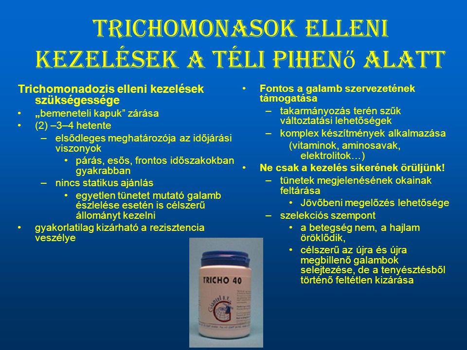 Trichomonasok elleni kezelések a téli pihenő alatt