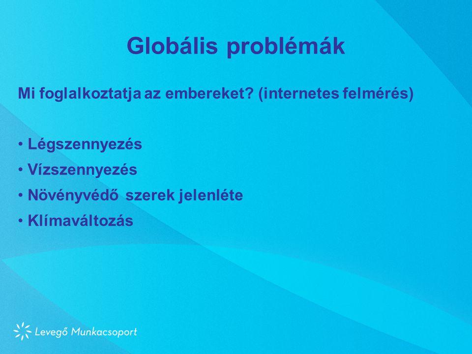 Globális problémák Mi foglalkoztatja az embereket (internetes felmérés) Légszennyezés. Vízszennyezés.