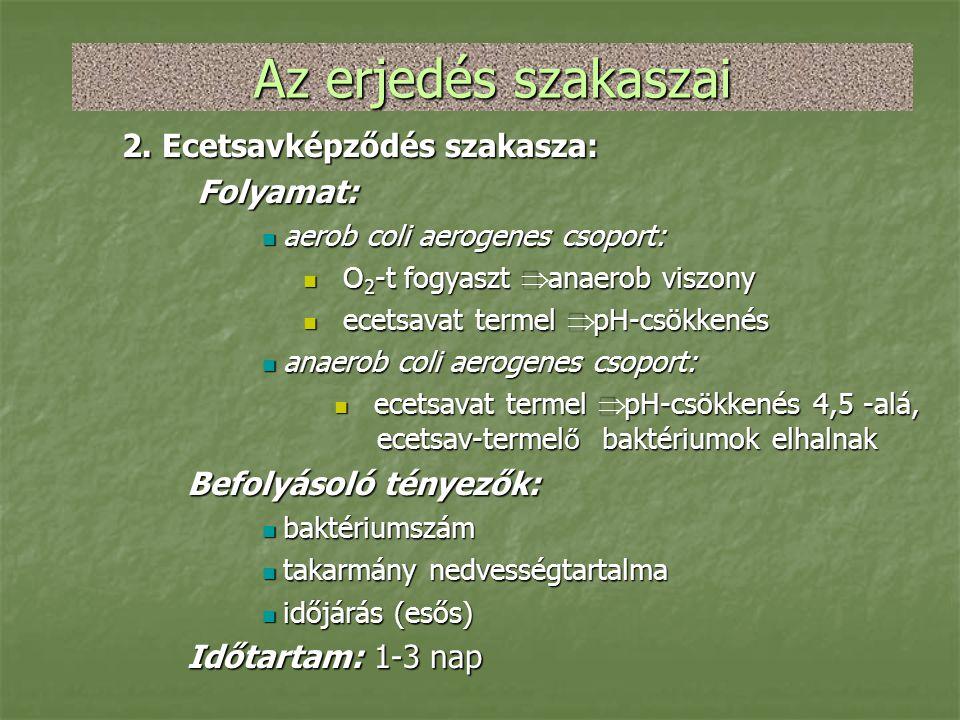 Az erjedés szakaszai 2. Ecetsavképződés szakasza: Folyamat:
