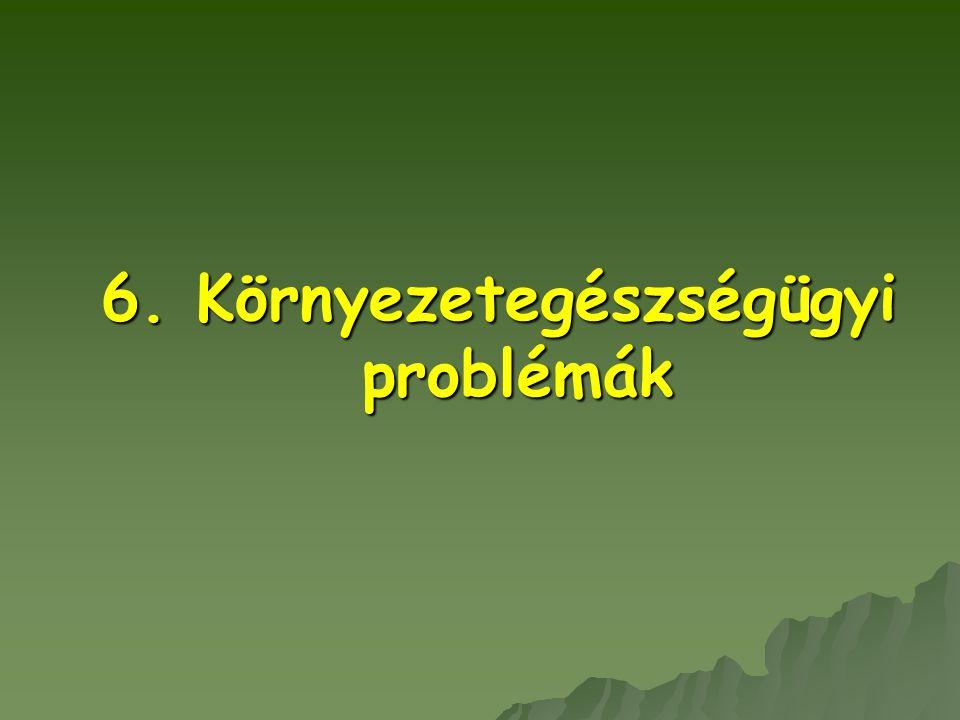 6. Környezetegészségügyi problémák