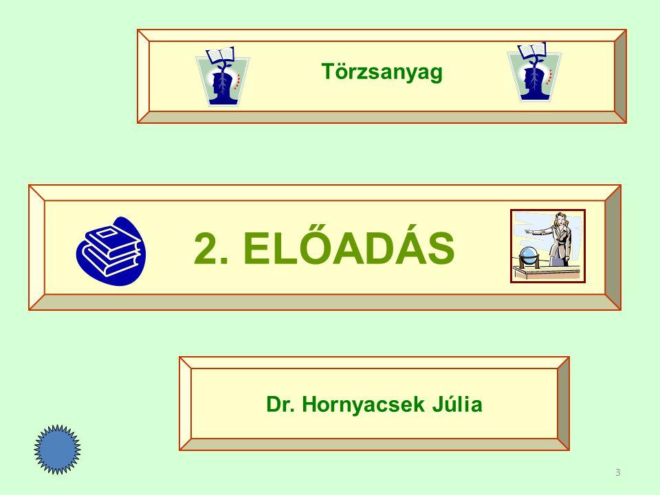 Törzsanyag 2. ELŐADÁS Dr. Hornyacsek Júlia