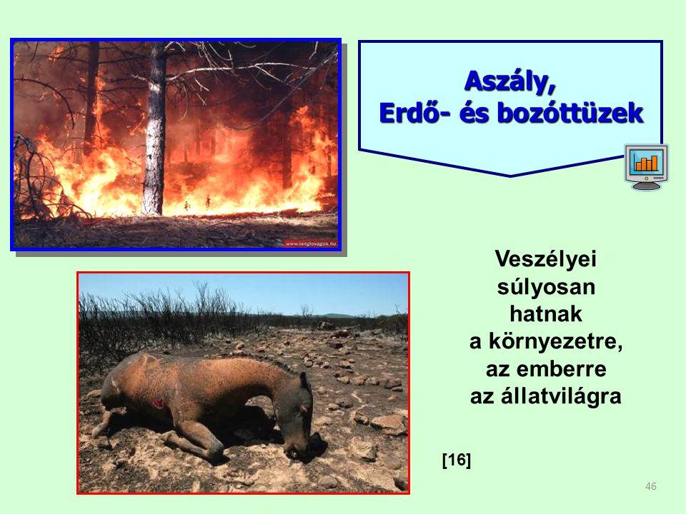 Aszály, Erdő- és bozóttüzek