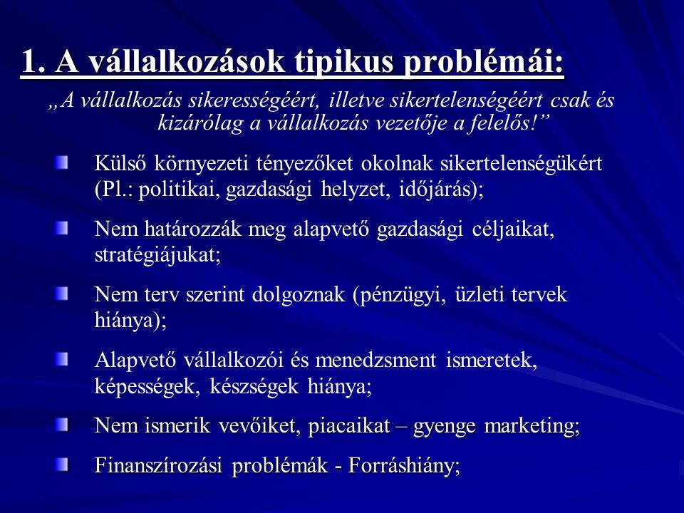 1. A vállalkozások tipikus problémái: