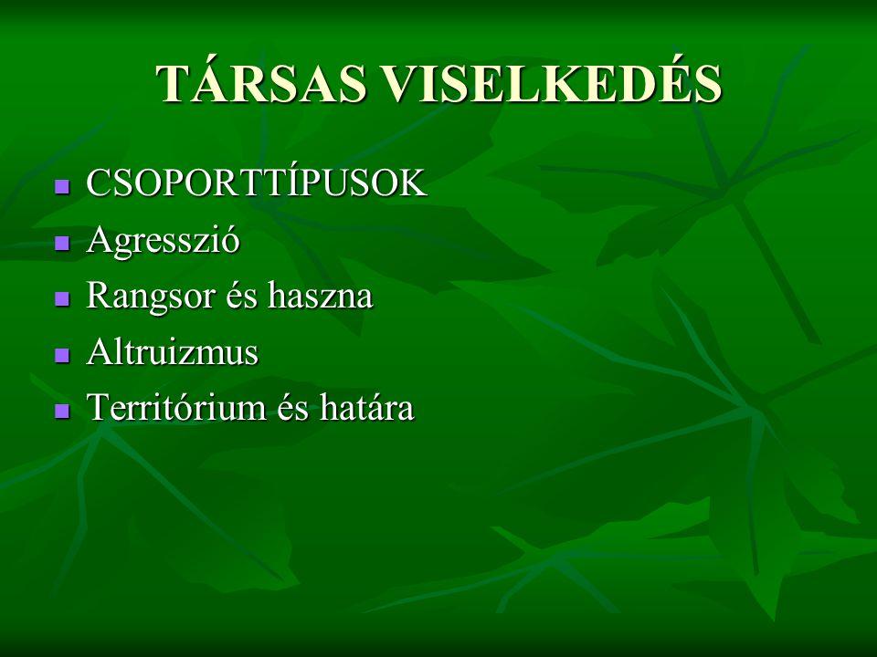 TÁRSAS VISELKEDÉS CSOPORTTÍPUSOK Agresszió Rangsor és haszna