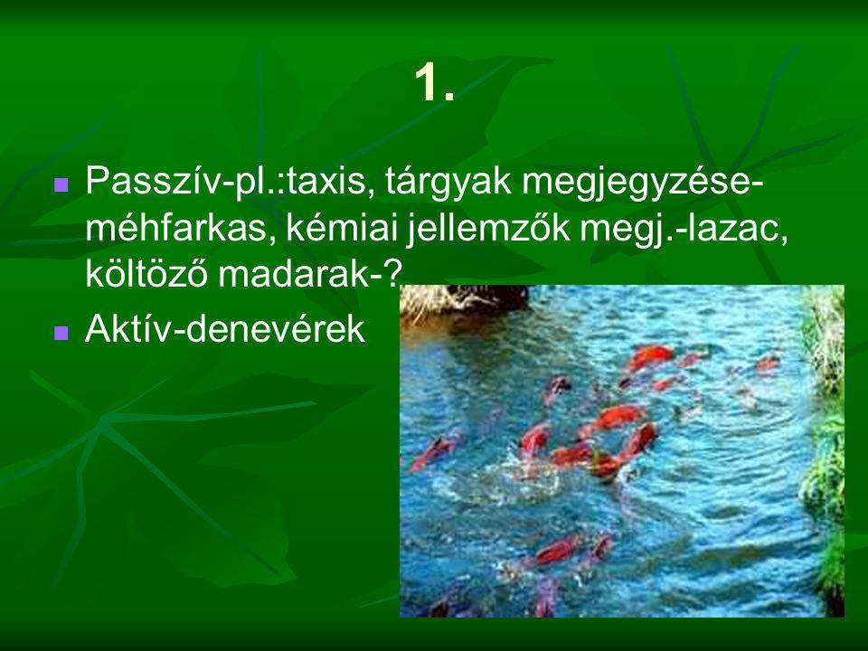 1. Passzív-pl.:taxis, tárgyak megjegyzése-méhfarkas, kémiai jellemzők megj.-lazac, költöző madarak-