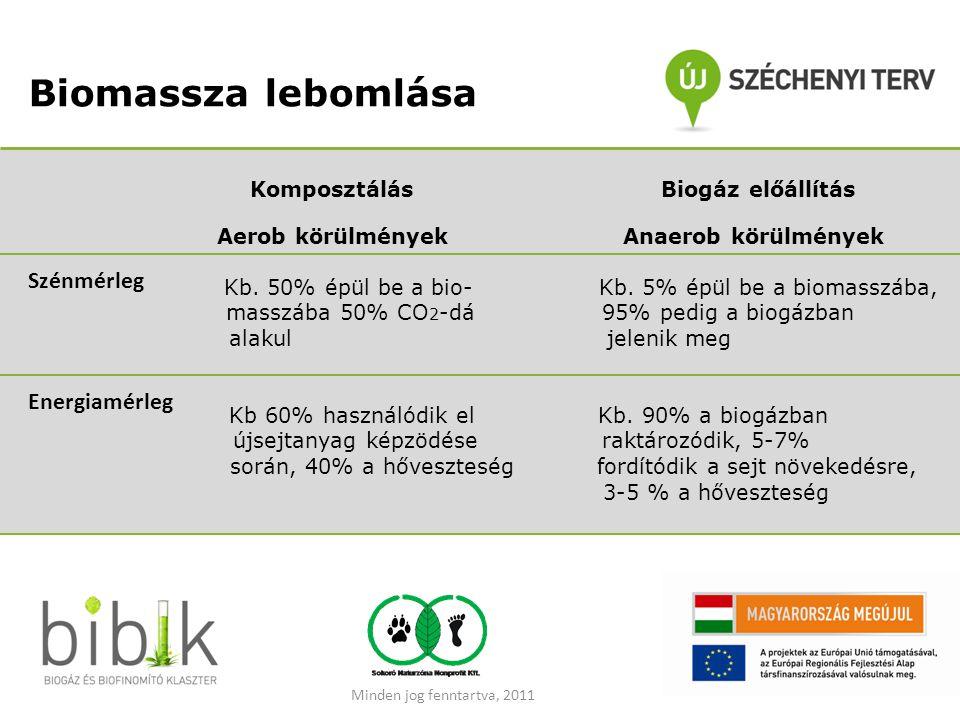 Biomassza lebomlása Szénmérleg Energiamérleg