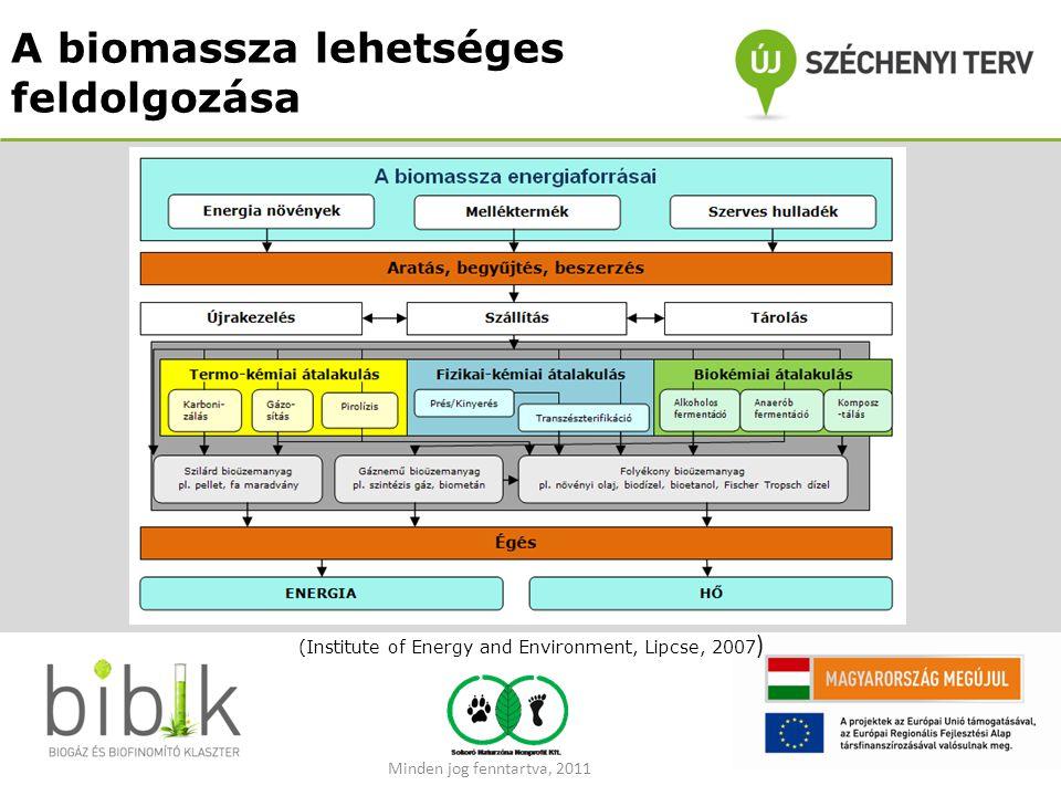 A biomassza lehetséges feldolgozása