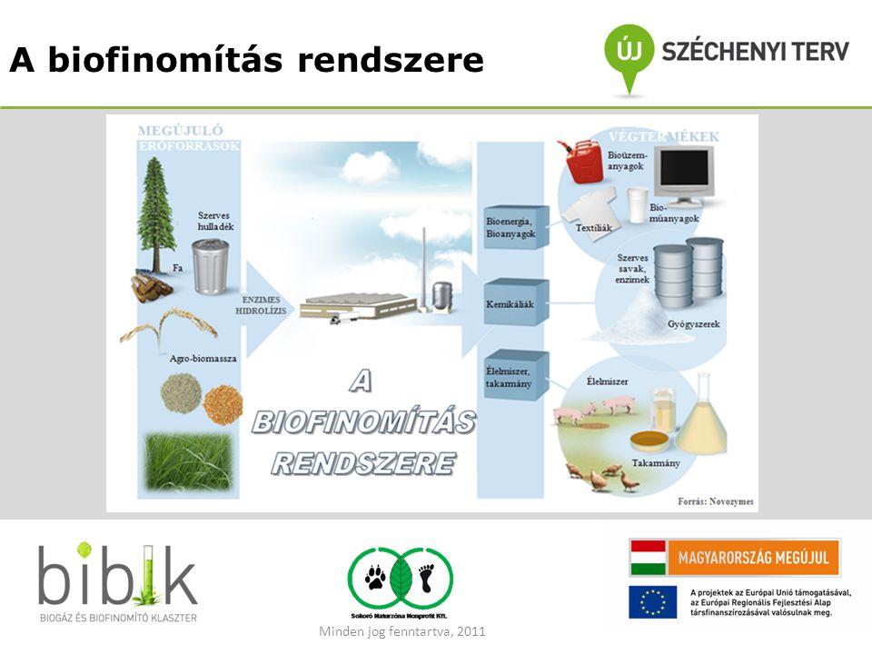 A biofinomítás rendszere