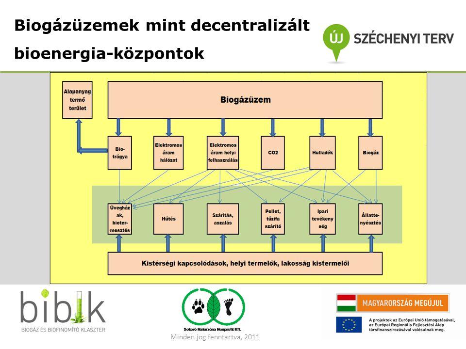 Biogázüzemek mint decentralizált bioenergia-központok