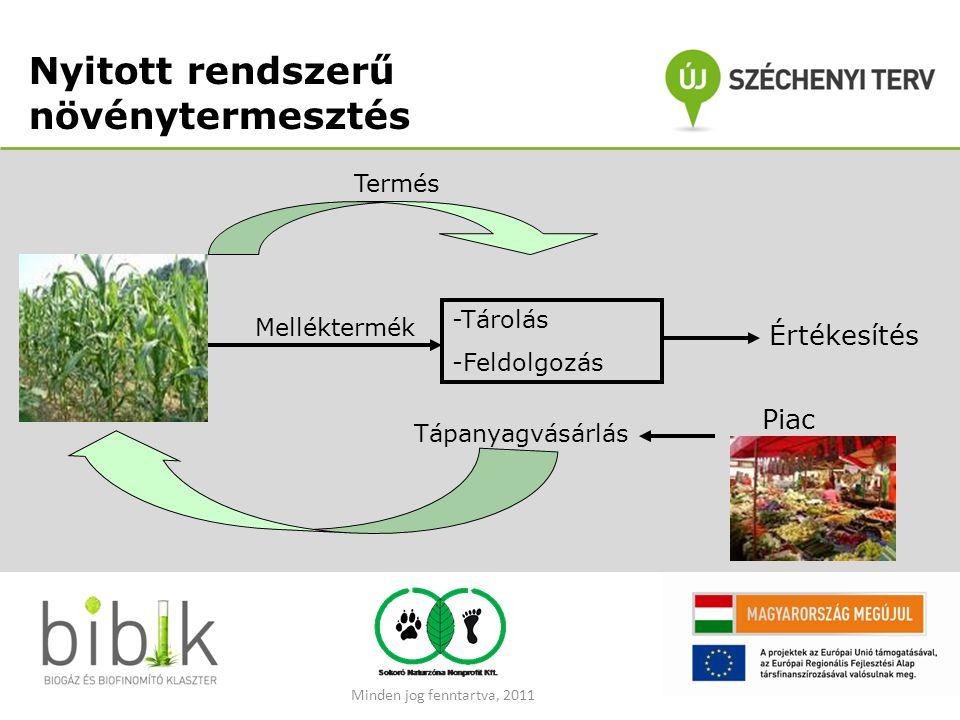 Nyitott rendszerű növénytermesztés