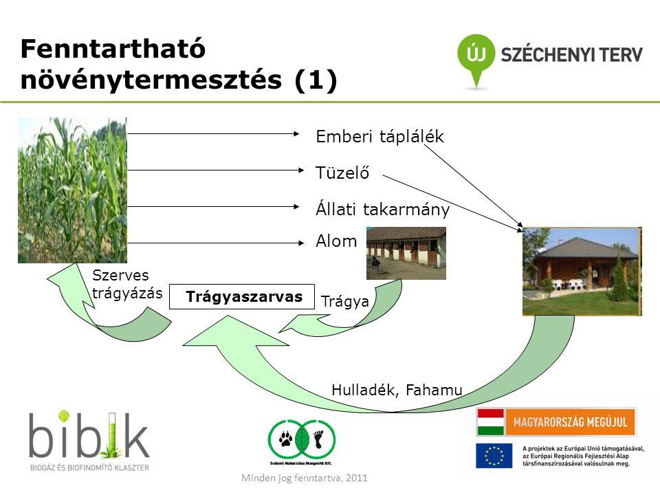 Fenntartható növénytermesztés (1)