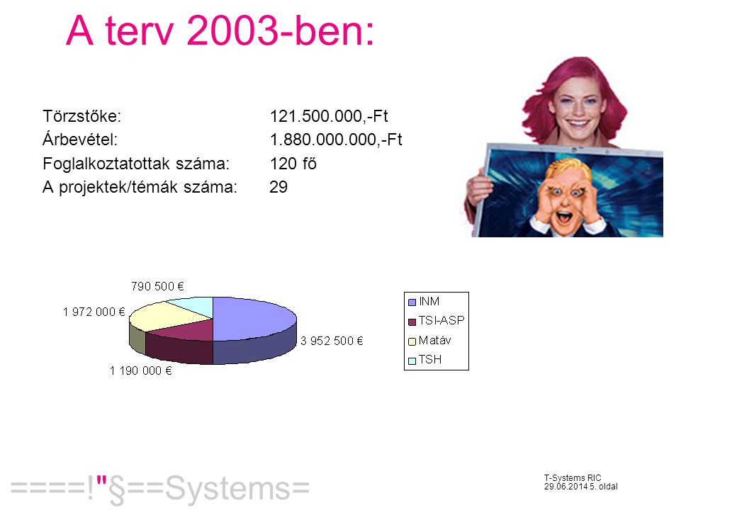 A terv 2003-ben: Törzstőke: 121.500.000,-Ft