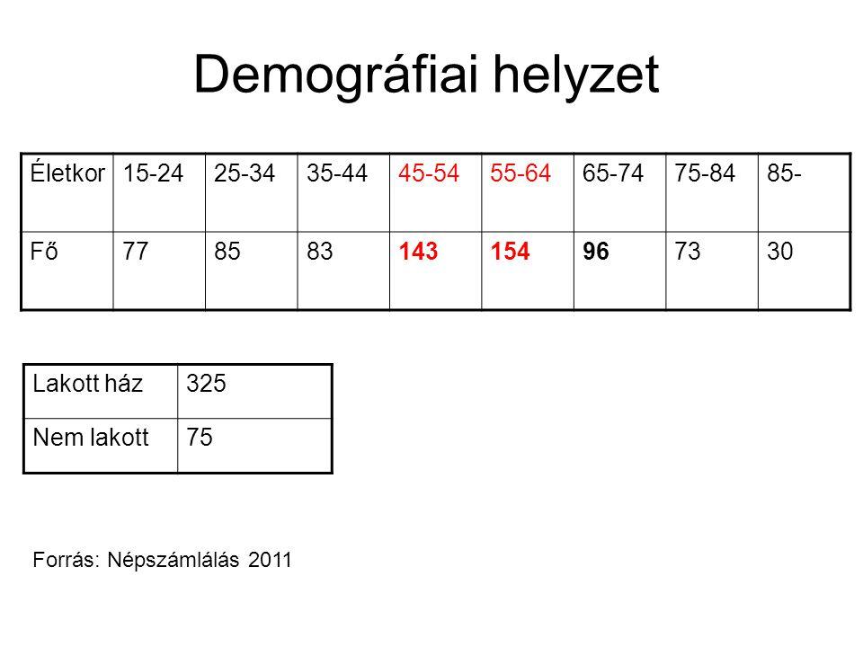 Demográfiai helyzet Életkor 15-24 25-34 35-44 45-54 55-64 65-74 75-84