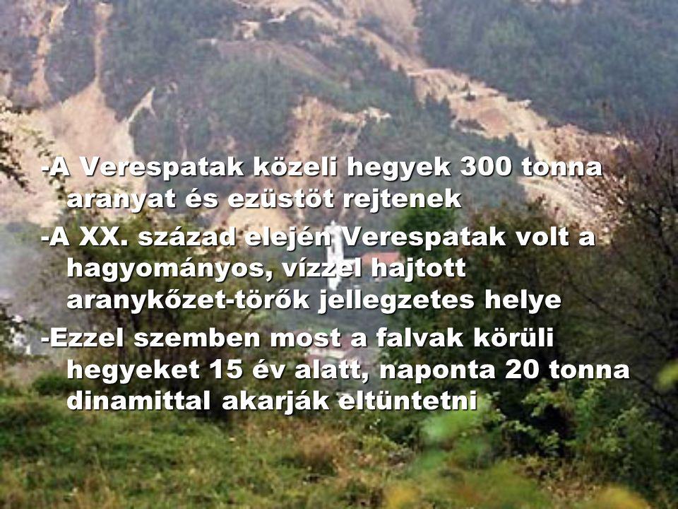 -A Verespatak közeli hegyek 300 tonna aranyat és ezüstöt rejtenek
