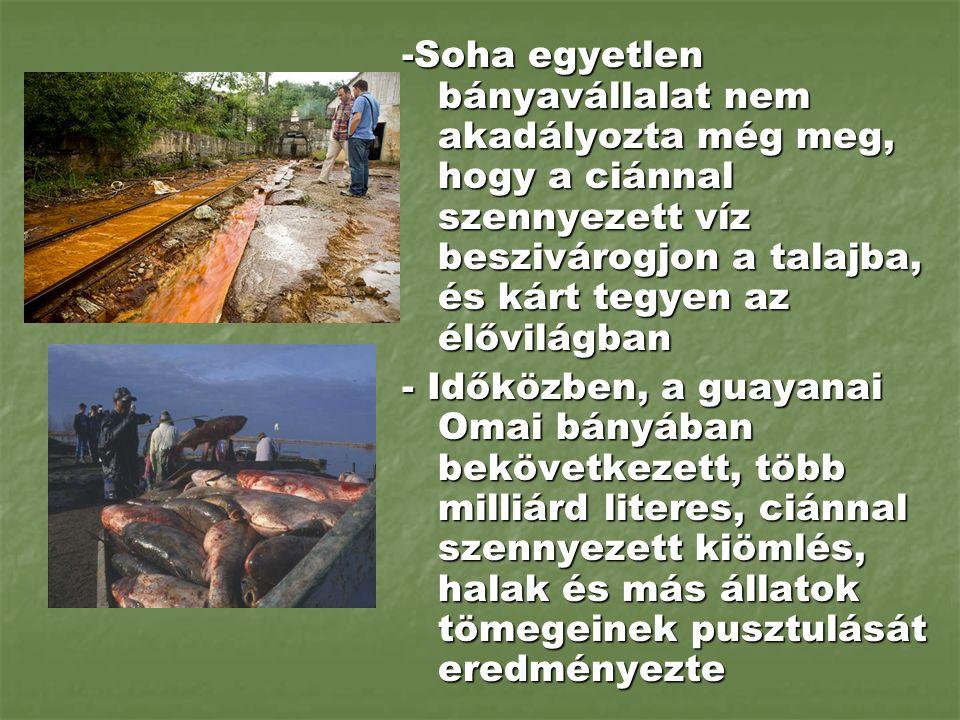 -Soha egyetlen bányavállalat nem akadályozta még meg, hogy a ciánnal szennyezett víz beszivárogjon a talajba, és kárt tegyen az élővilágban