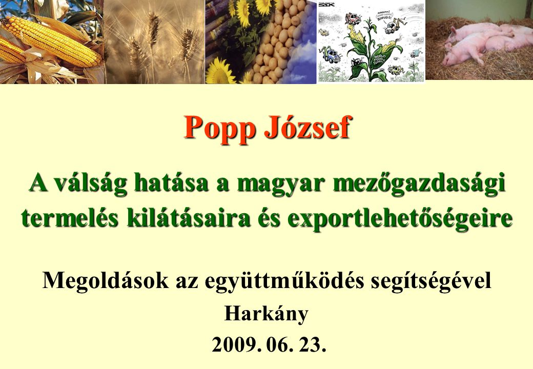 Megoldások az együttműködés segítségével Harkány 2009. 06. 23.