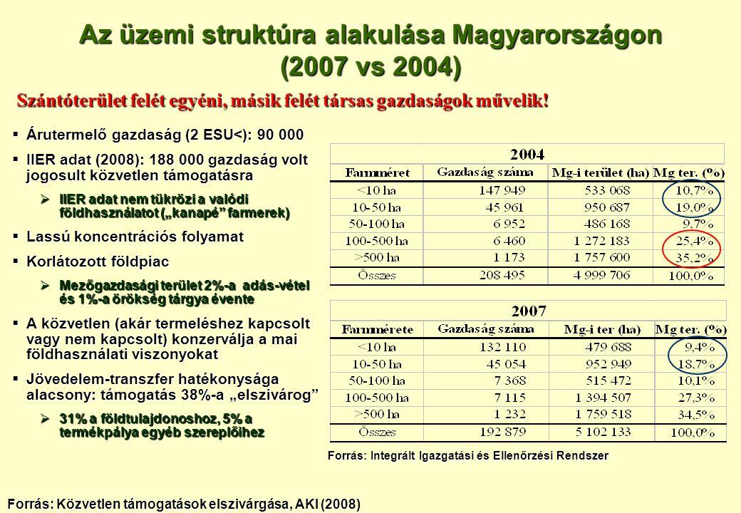 Az üzemi struktúra alakulása Magyarországon (2007 vs 2004)