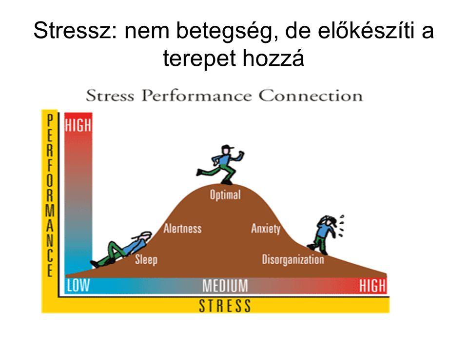 Stressz: nem betegség, de előkészíti a terepet hozzá