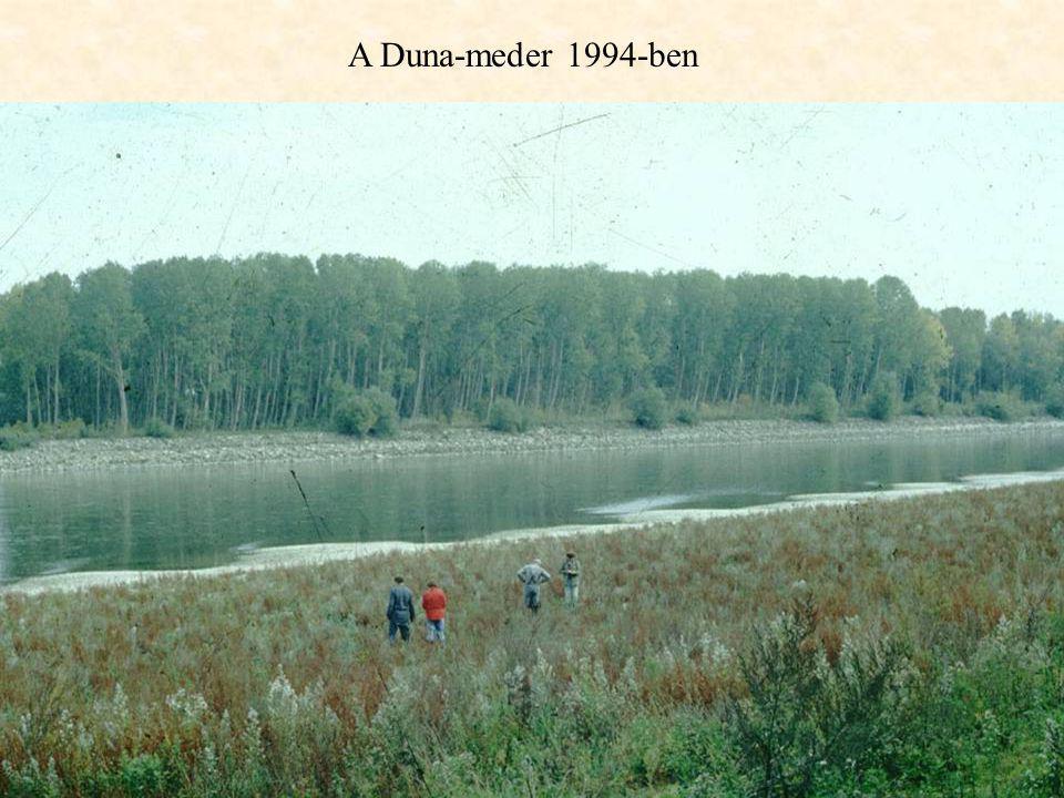 A Duna-meder 1994-ben
