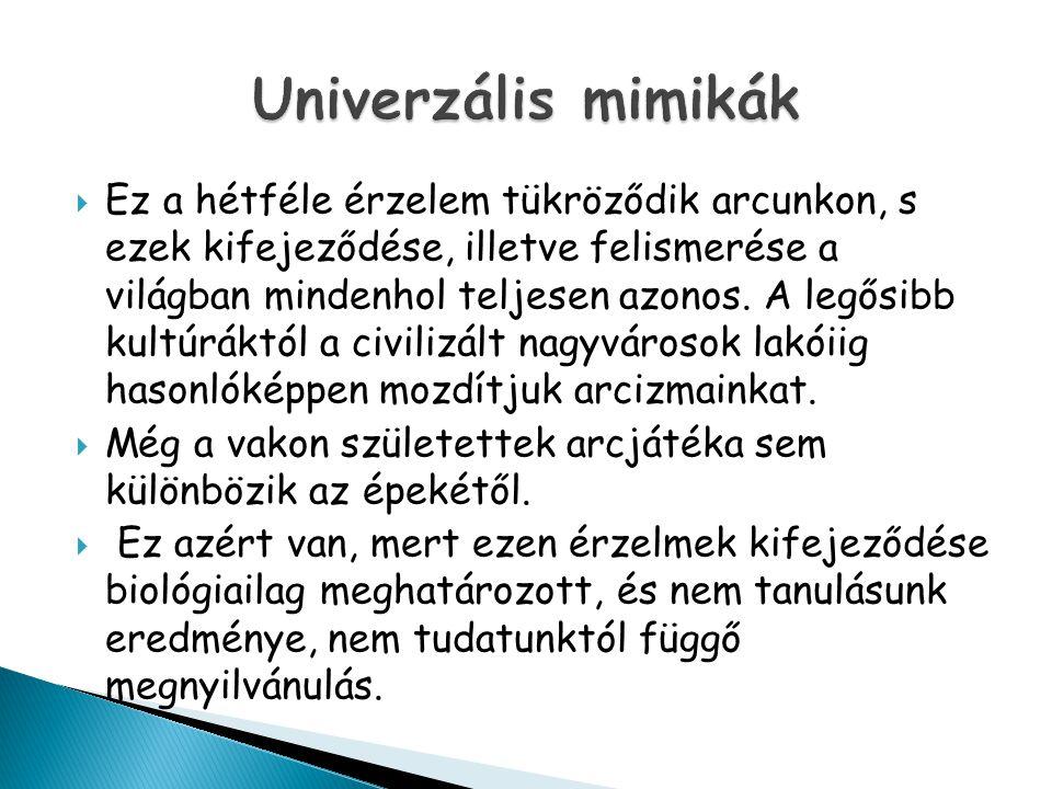 Univerzális mimikák