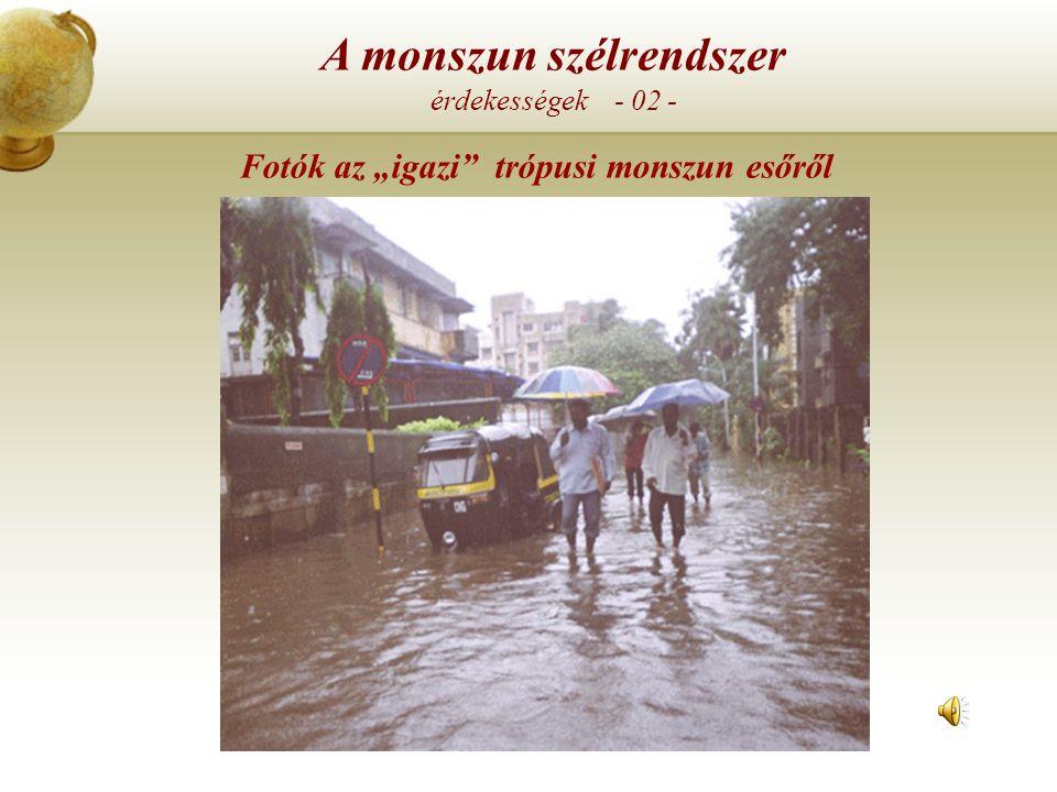 """Fotók az """"igazi trópusi monszun esőről"""