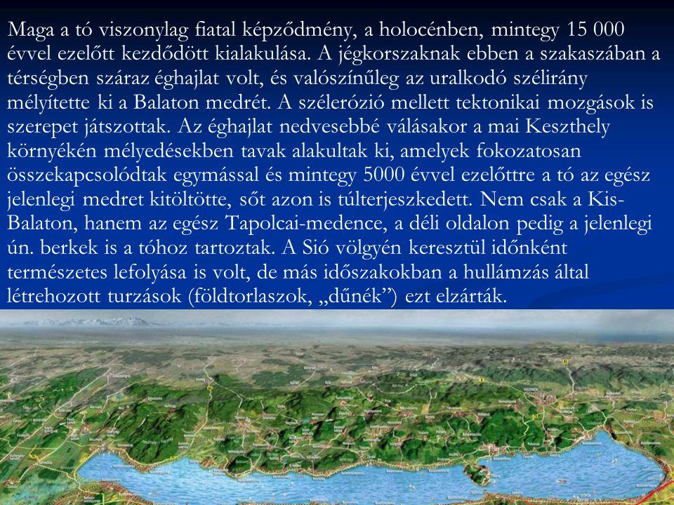 Maga a tó viszonylag fiatal képződmény, a holocénben, mintegy 15 000 évvel ezelőtt kezdődött kialakulása.
