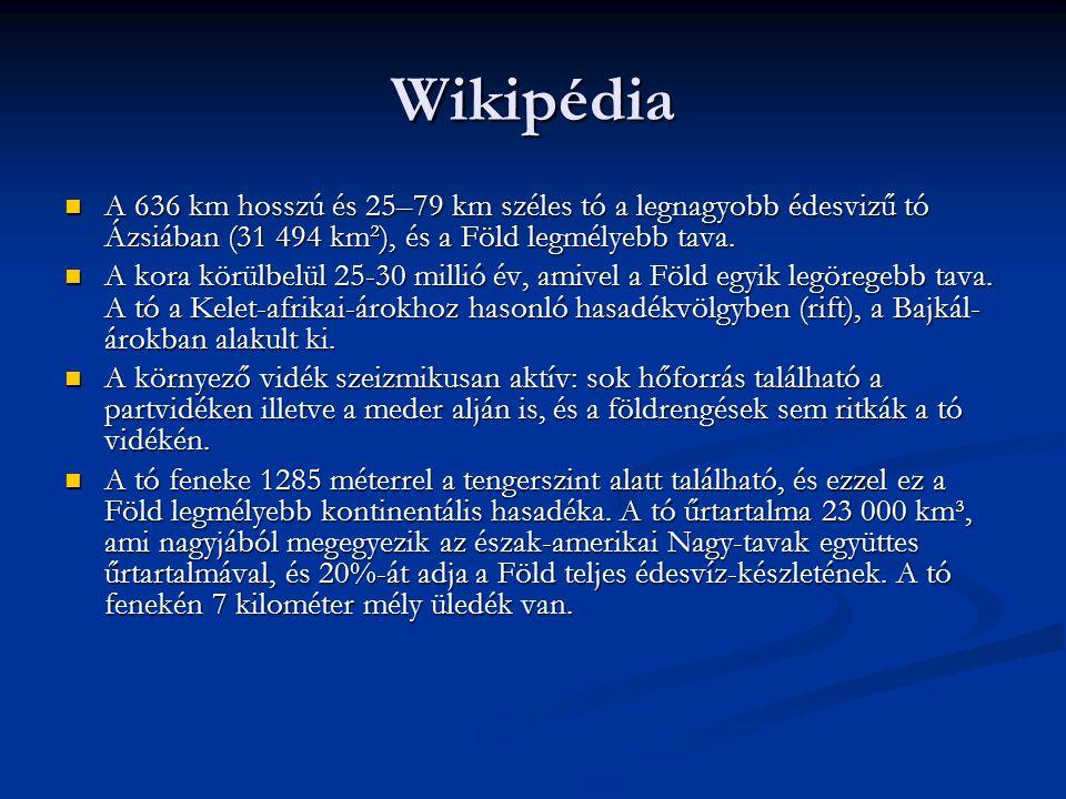 Wikipédia A 636 km hosszú és 25–79 km széles tó a legnagyobb édesvizű tó Ázsiában (31 494 km²), és a Föld legmélyebb tava.
