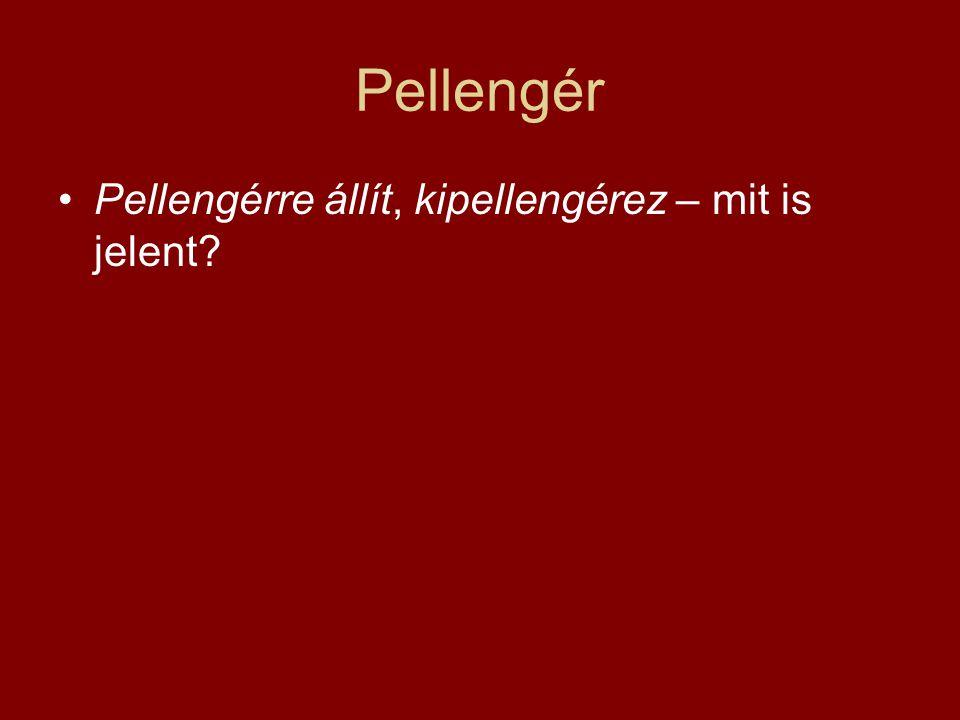 Pellengér Pellengérre állít, kipellengérez – mit is jelent