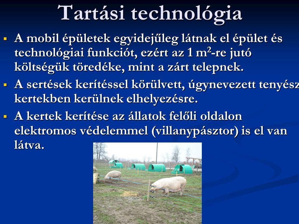 Tartási technológia