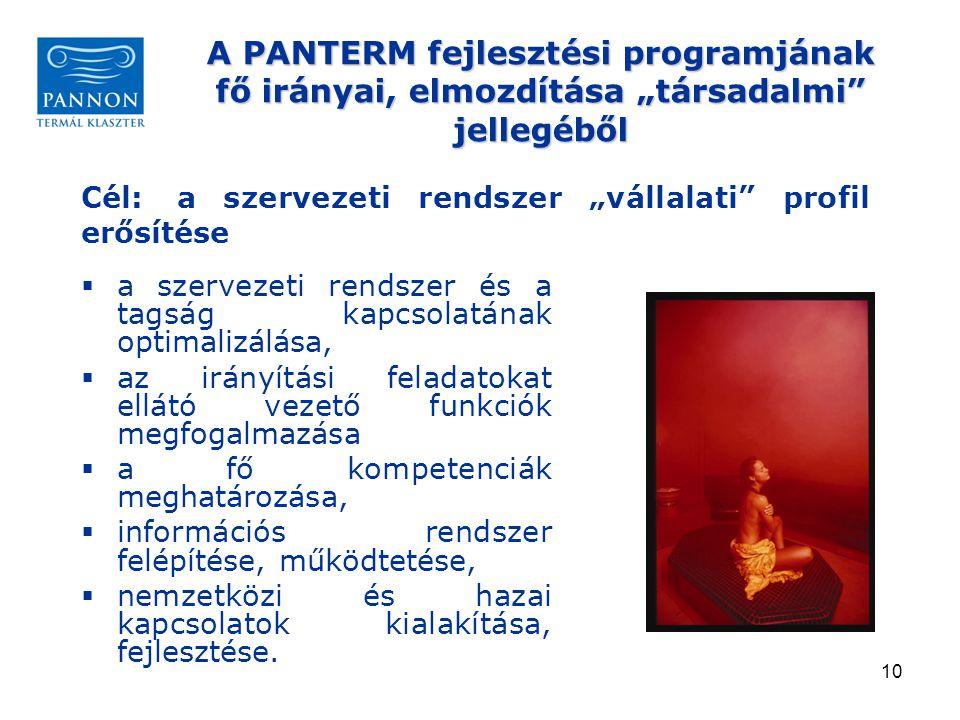 """A PANTERM fejlesztési programjának fő irányai, elmozdítása """"társadalmi jellegéből"""