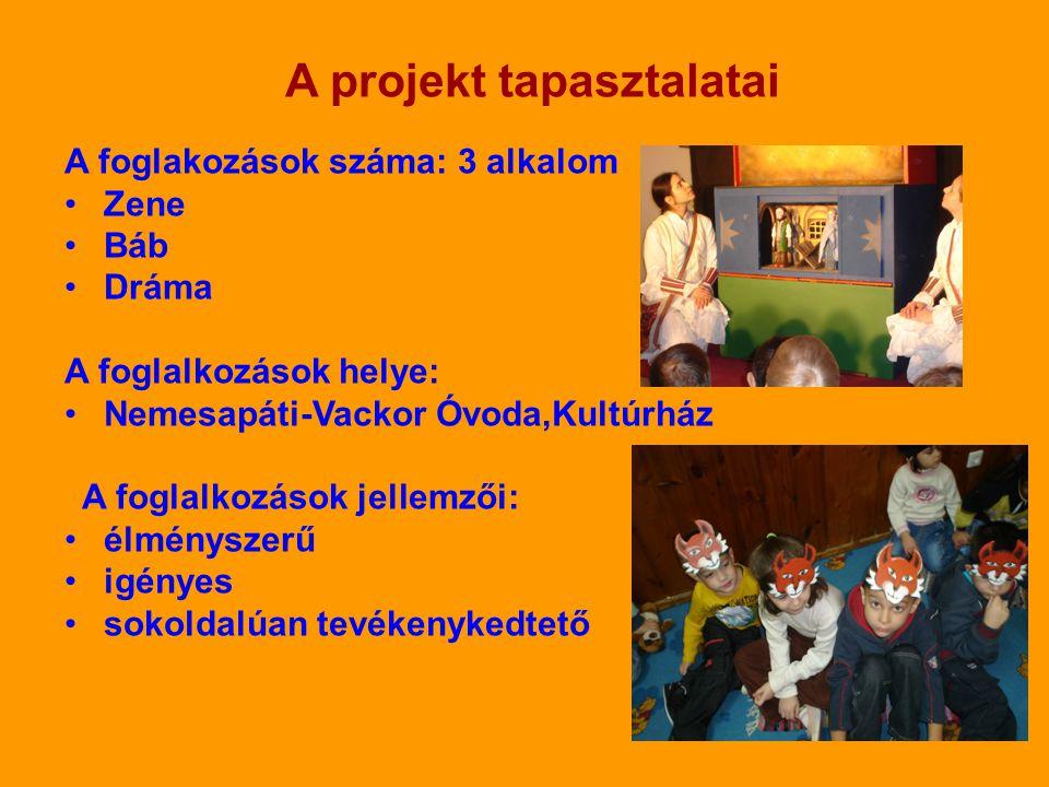 A projekt tapasztalatai