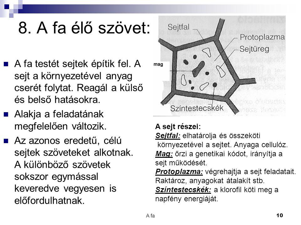 8. A fa élő szövet: A fa testét sejtek építik fel. A sejt a környezetével anyag cserét folytat. Reagál a külső és belső hatásokra.