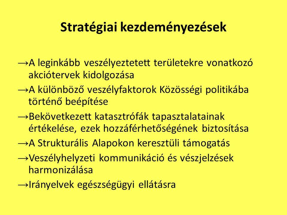 Stratégiai kezdeményezések