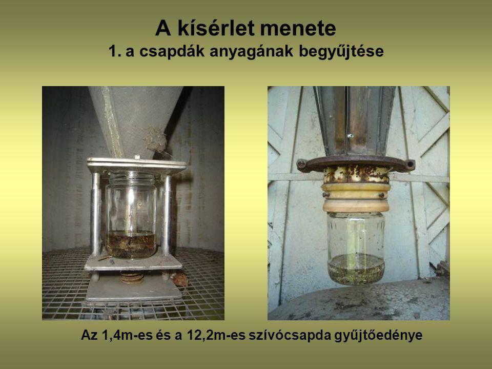 A kísérlet menete 1. a csapdák anyagának begyűjtése