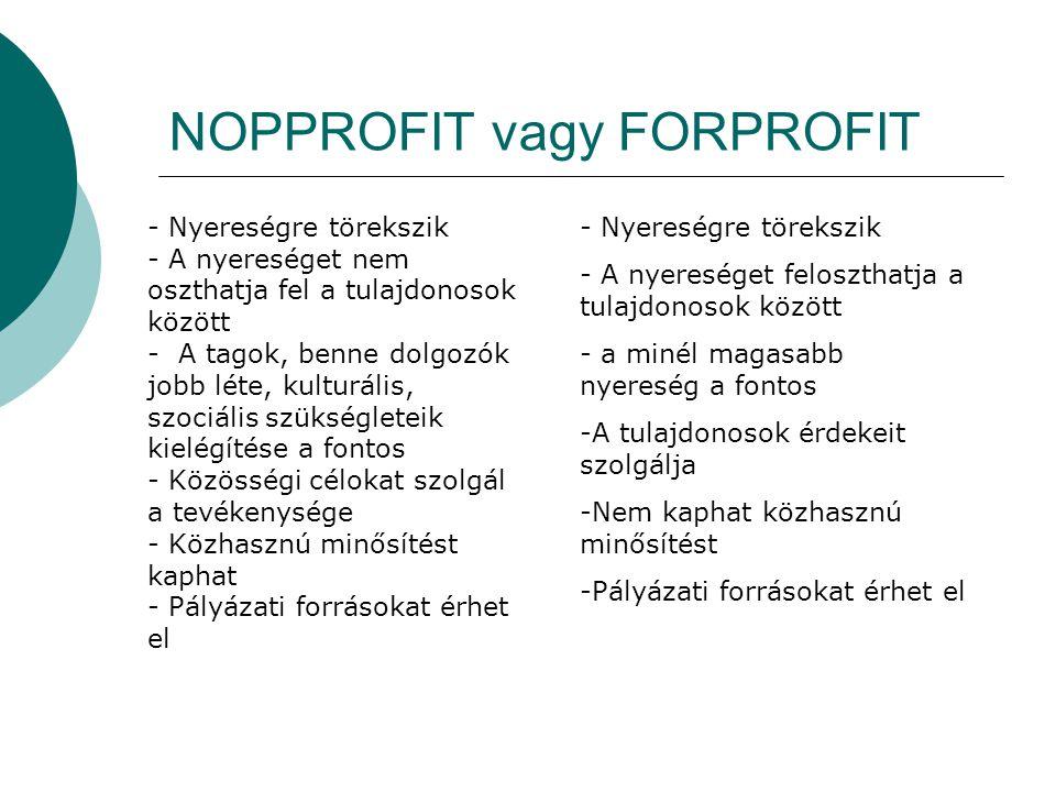 NOPPROFIT vagy FORPROFIT