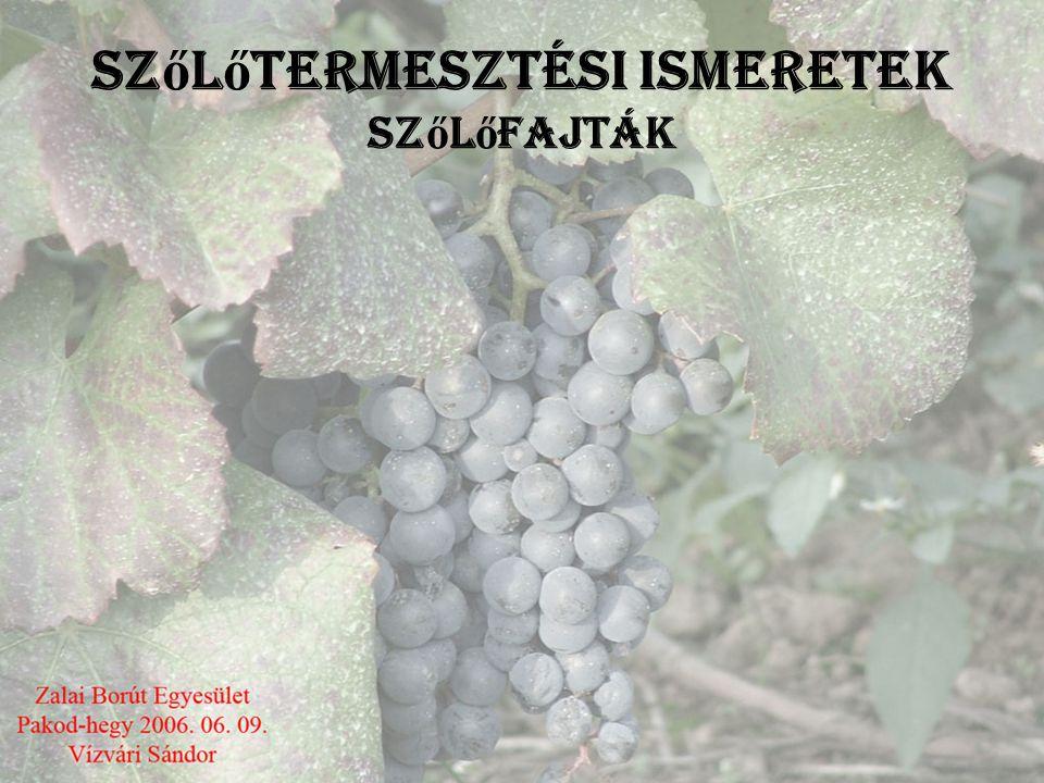 Szőlőtermesztési ismeretek szőlőfajták