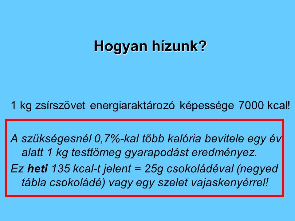 Hogyan hízunk 1 kg zsírszövet energiaraktározó képessége 7000 kcal!