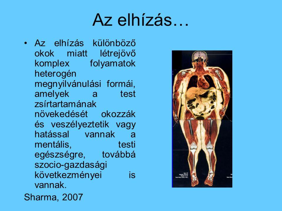 Az elhízás…