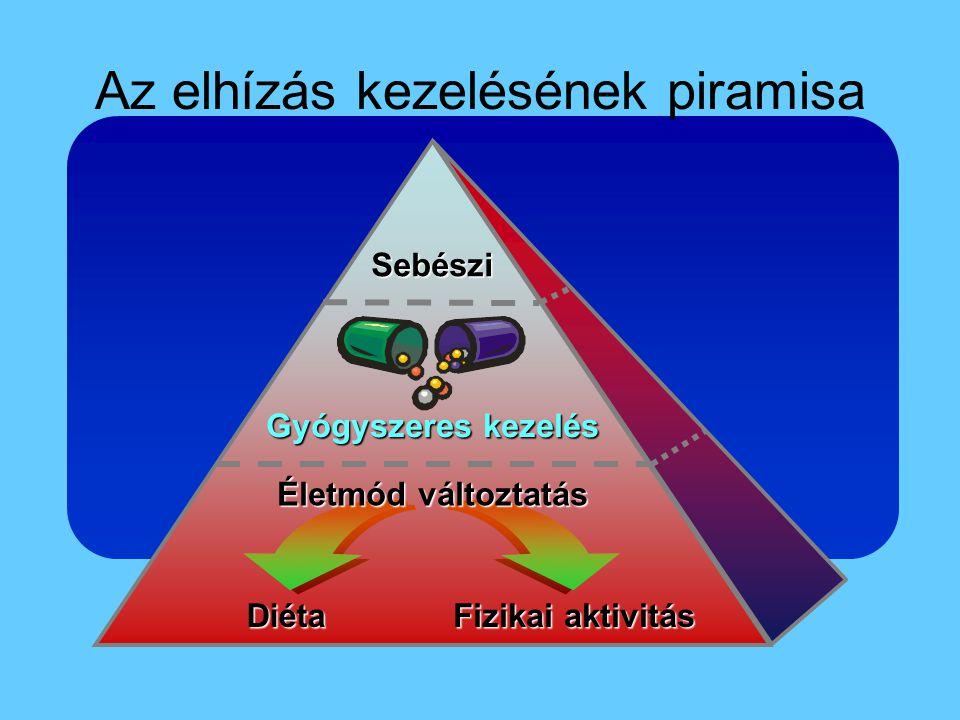 Az elhízás kezelésének piramisa